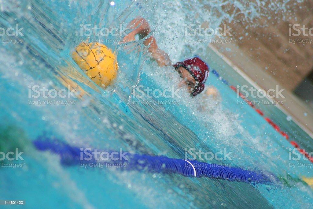 Water Polo Sprint royalty-free stock photo