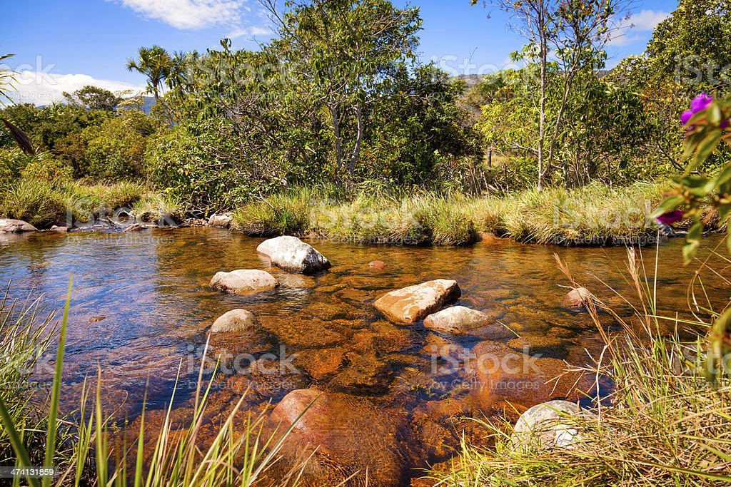 Water pond in a golden river, Auyantepuy, Venezuela royalty-free stock photo