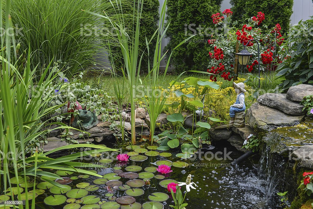 water pond stock photo