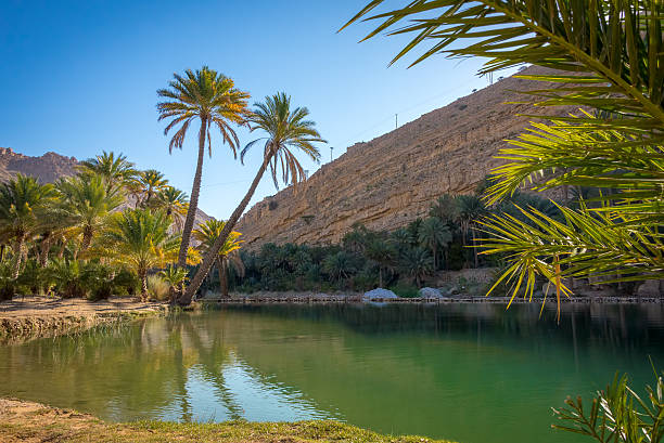 Water pools in Wadi Bani Khalid, Oman Water pools in Wadi Bani Khalid, Oman, Arabia riverbed stock pictures, royalty-free photos & images