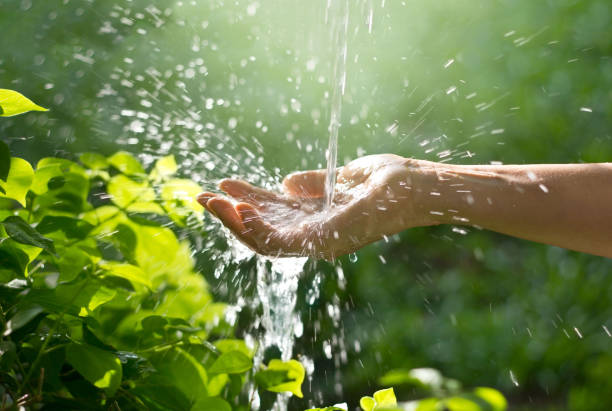 Water pouring in woman hand on nature background, environment concept stock photo