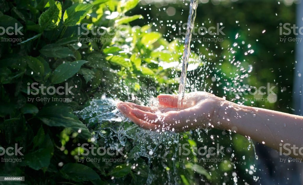 Water pouring in woman hand on nature background, environment issues - foto stock