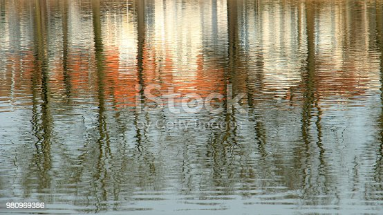 Trees and houses reflecting in rippling water surface.