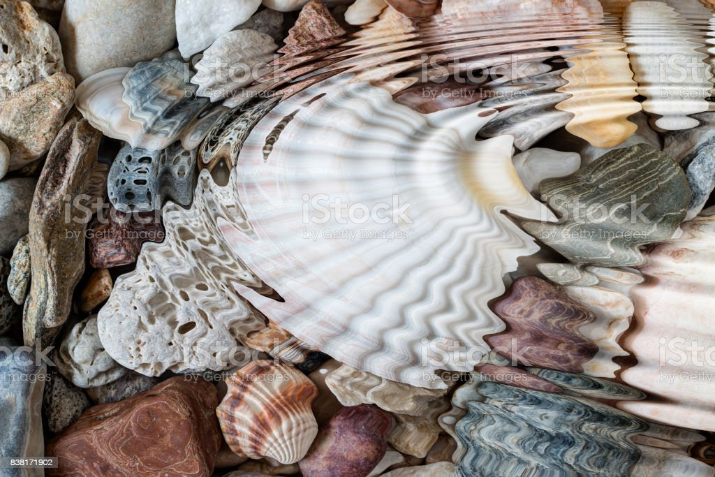 Water ripples above pebbles and seashells stock photo