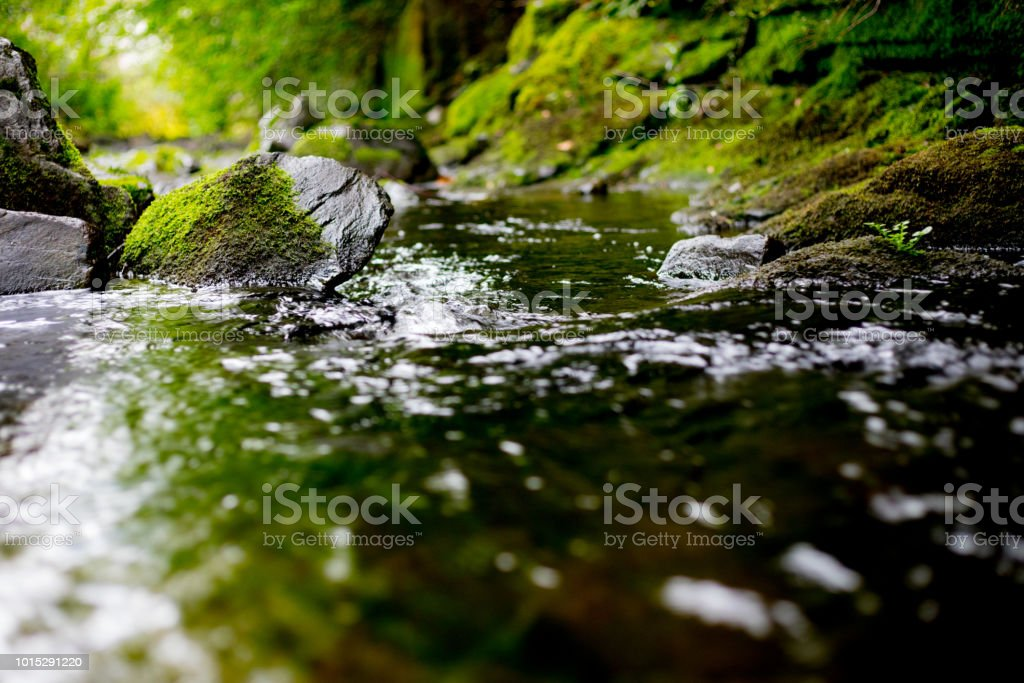 water, river stock photo