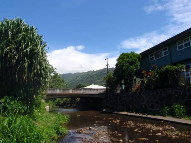 Water runs down Manoa Stream stock photo