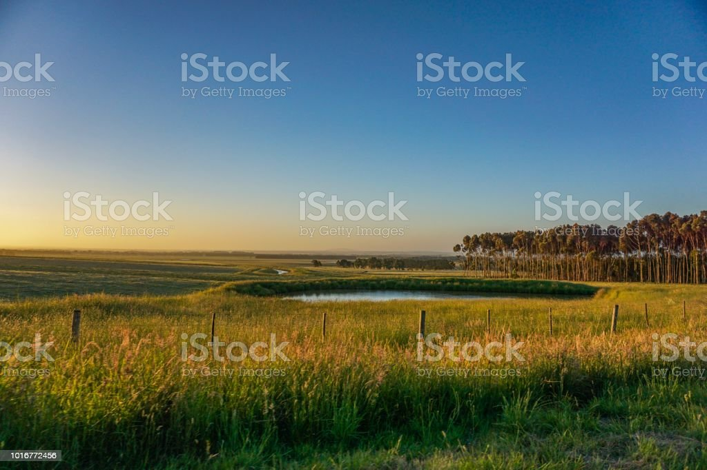 Water safe in the outback of Australia stock photo