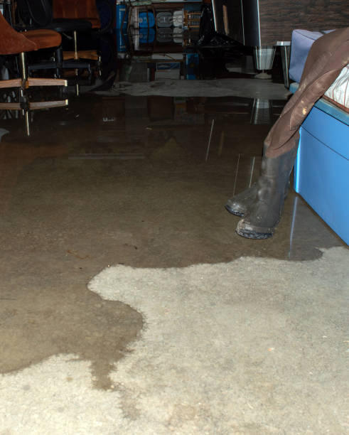 water seeping across cement - basement stock pictures, royalty-free photos & images