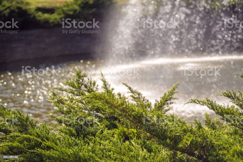 Water splashing foto stock royalty-free