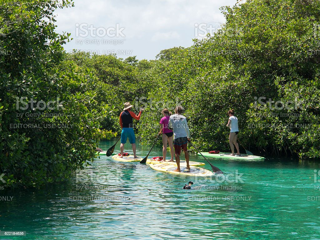 Water sport in Mexican Sinkhole (Cenote), Mexico stock photo