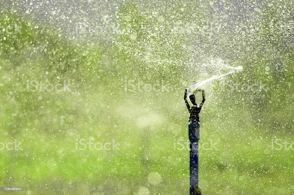 water sprinkler royalty-free stock photo