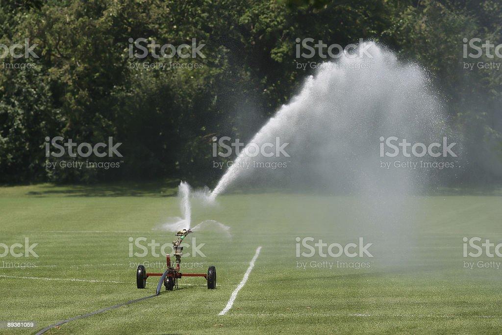 sprinkler foto stock royalty-free