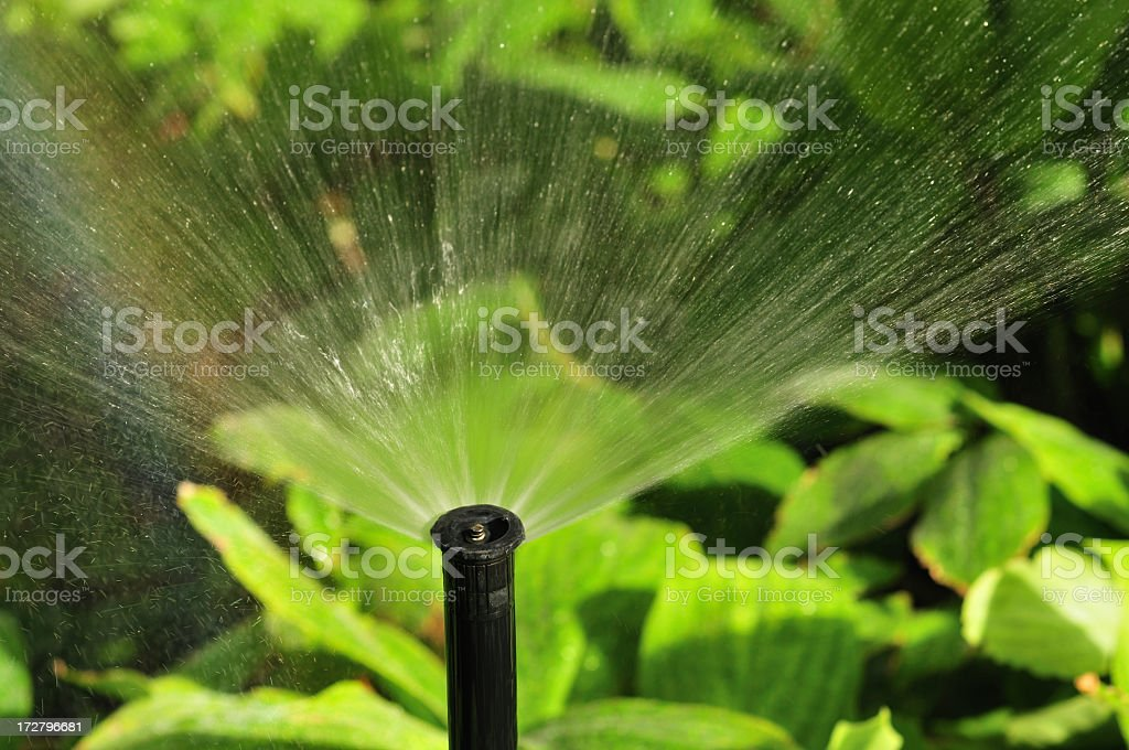 Water Sprinkler spreading clear water on plants royalty-free stock photo