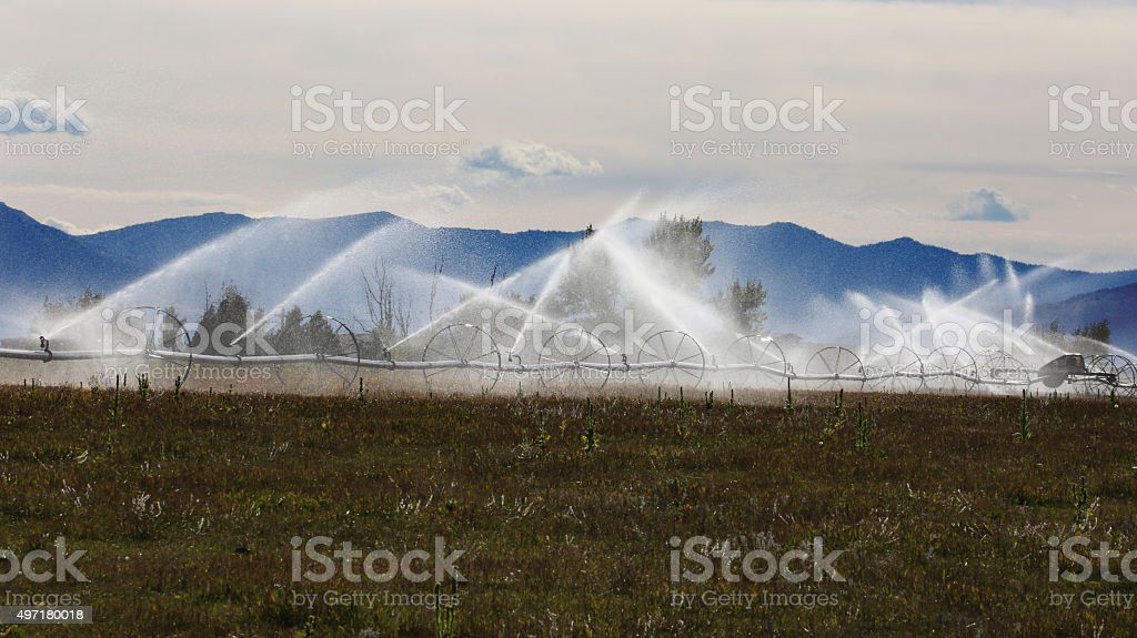 Water Sprinklers Farming Irrigation Systems stock photo