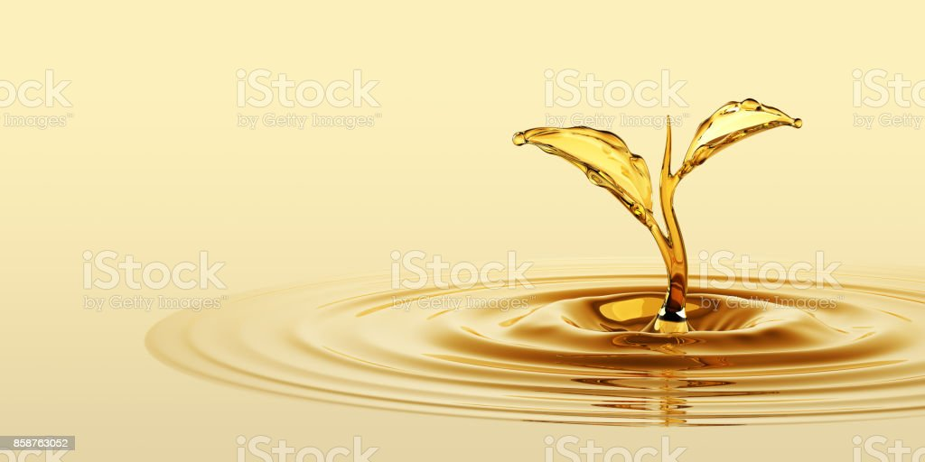 Water Sprout stock photo