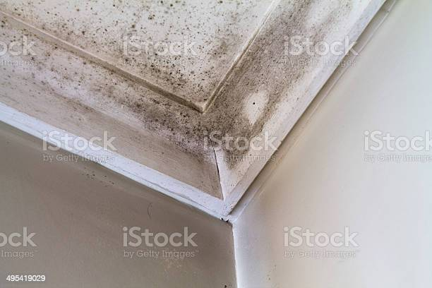 Water Stains On The Roof Of A House Stock Photo - Download Image Now