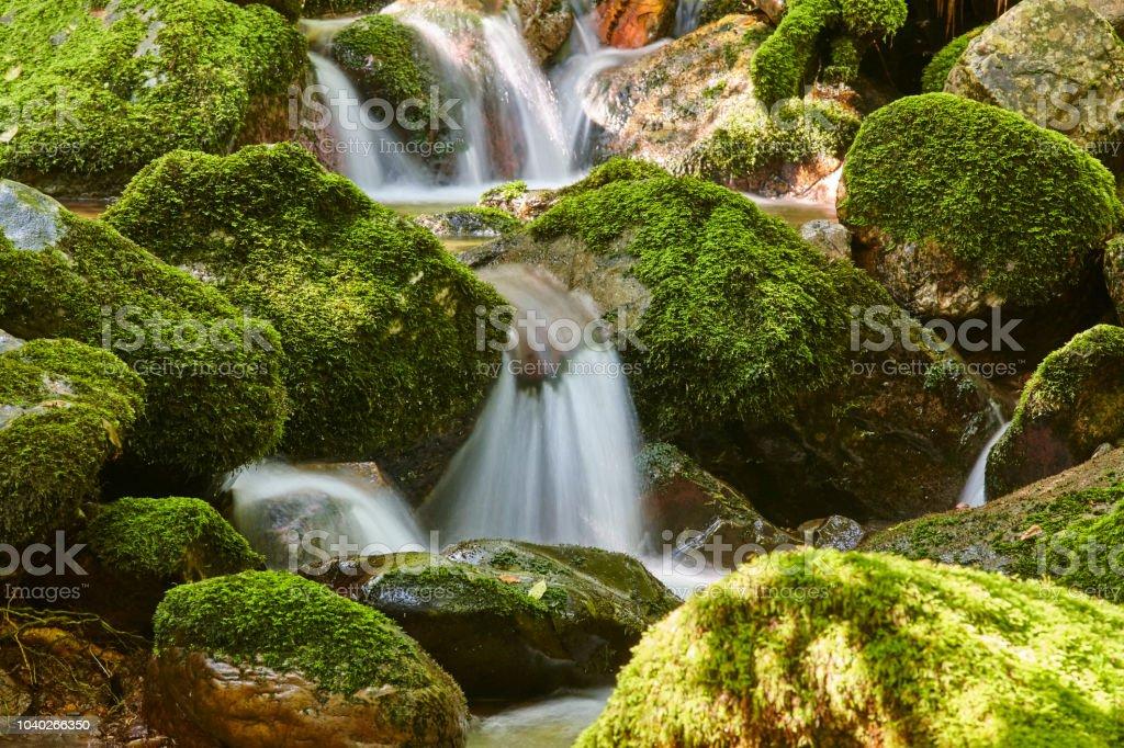 Wasserstrom mit bemoosten Felsen im Biosphärenreservat Muniellos. Spanien – Foto