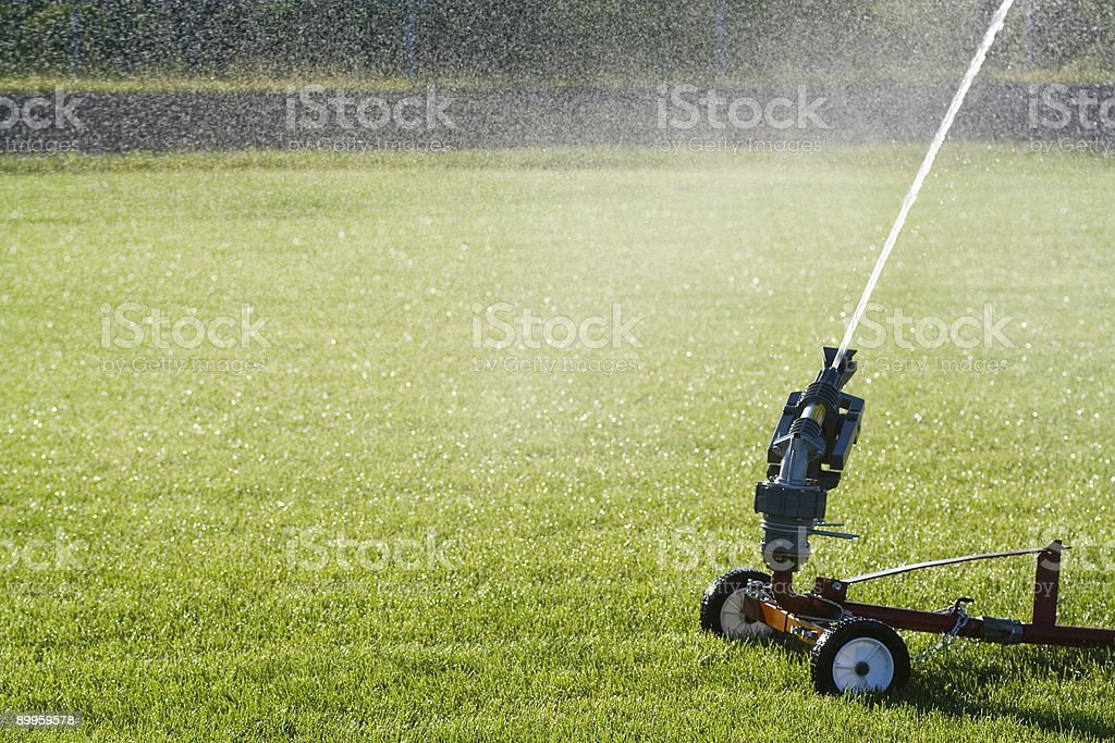 Water the grass royalty-free stock photo