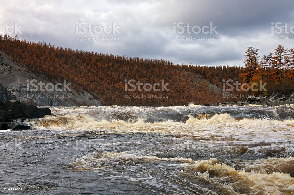Water threshold on the Siberian taiga river in the fall. stock photo