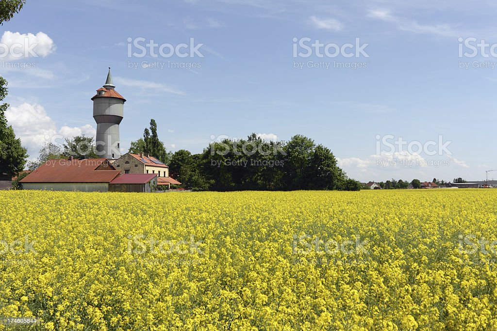 Water tower and rape fields royalty-free stock photo