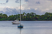 sail boats near the cost with palm trees in cloudy weather