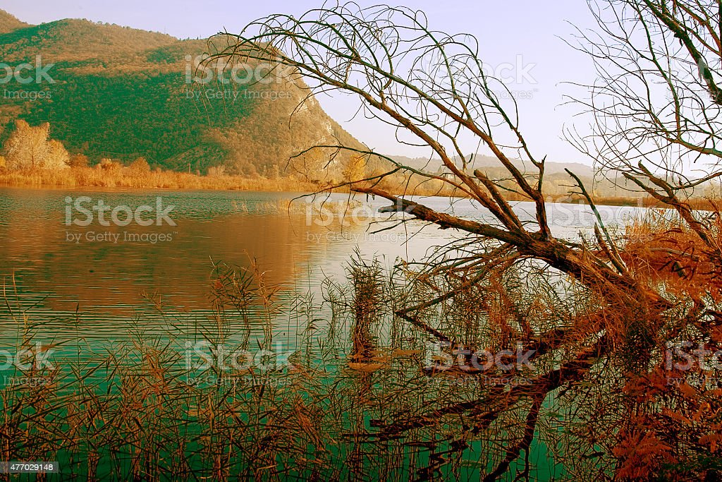 Water trees and hill stock photo