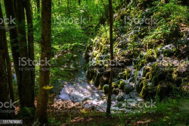 Photo of Water Trickling Down a Hill