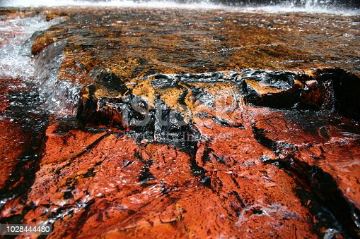 waterfall in the rainforest in canaima Edo. Bolivar - Venezuela