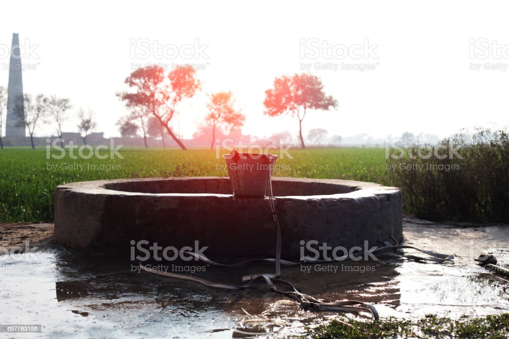 Wasser gut im grünen Bereich – Foto