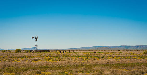 Water Well on the Prairie Lone windmill on a Texas ranch ranch stock pictures, royalty-free photos & images