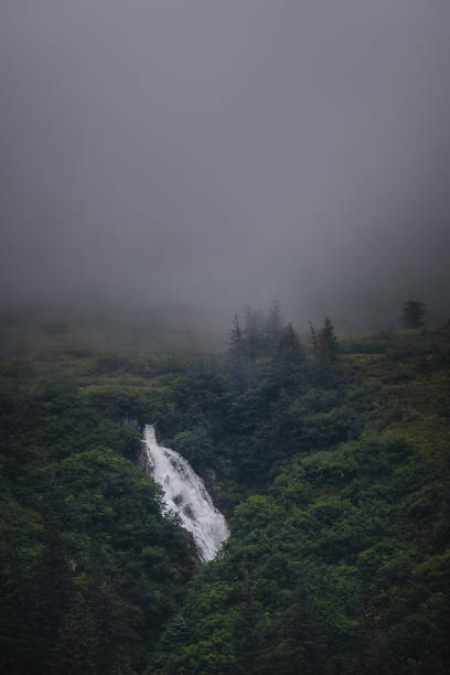 Waterall in the Misty Forest stock photo