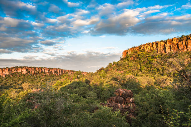 waterberg plateau and the national park, namibia - плато стоковые фото и изображения