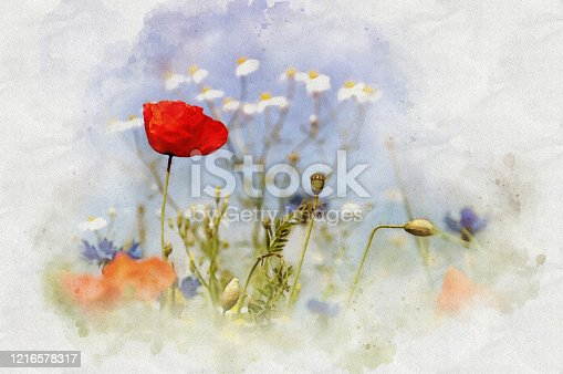 istock Watercolor Artwork of Poppys and blue sky 1216578317