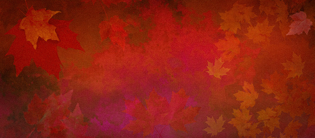 Watercolor Background of Abstract Red Leaves on Watercolor Paper with Copy Space
