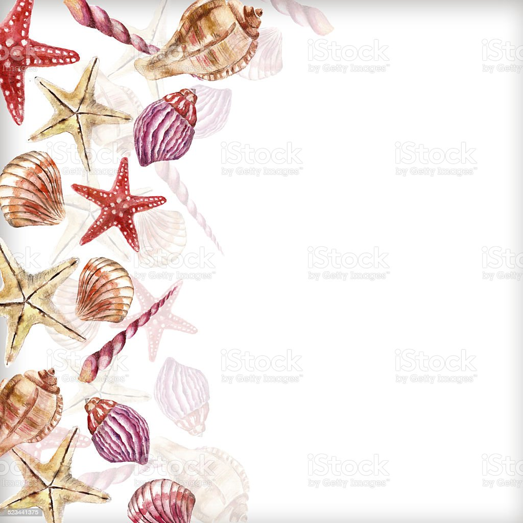 Watercolor background with sea-shell vector art illustration