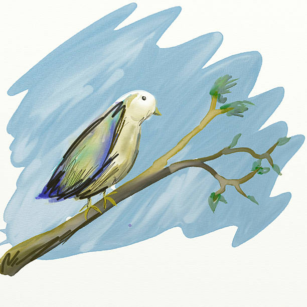 Aquarelle oiseaux - Photo