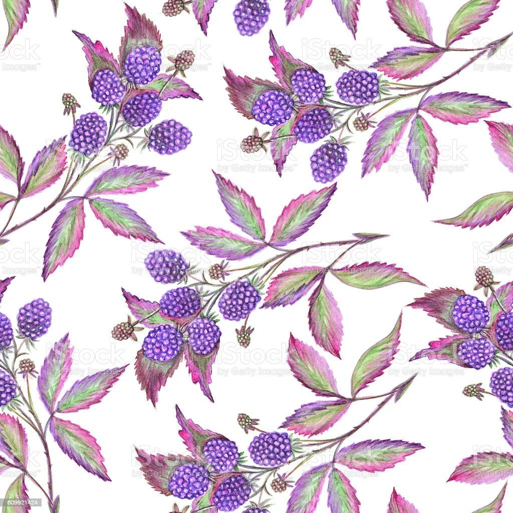 Watercolor blackberry seamless pattern stock photo