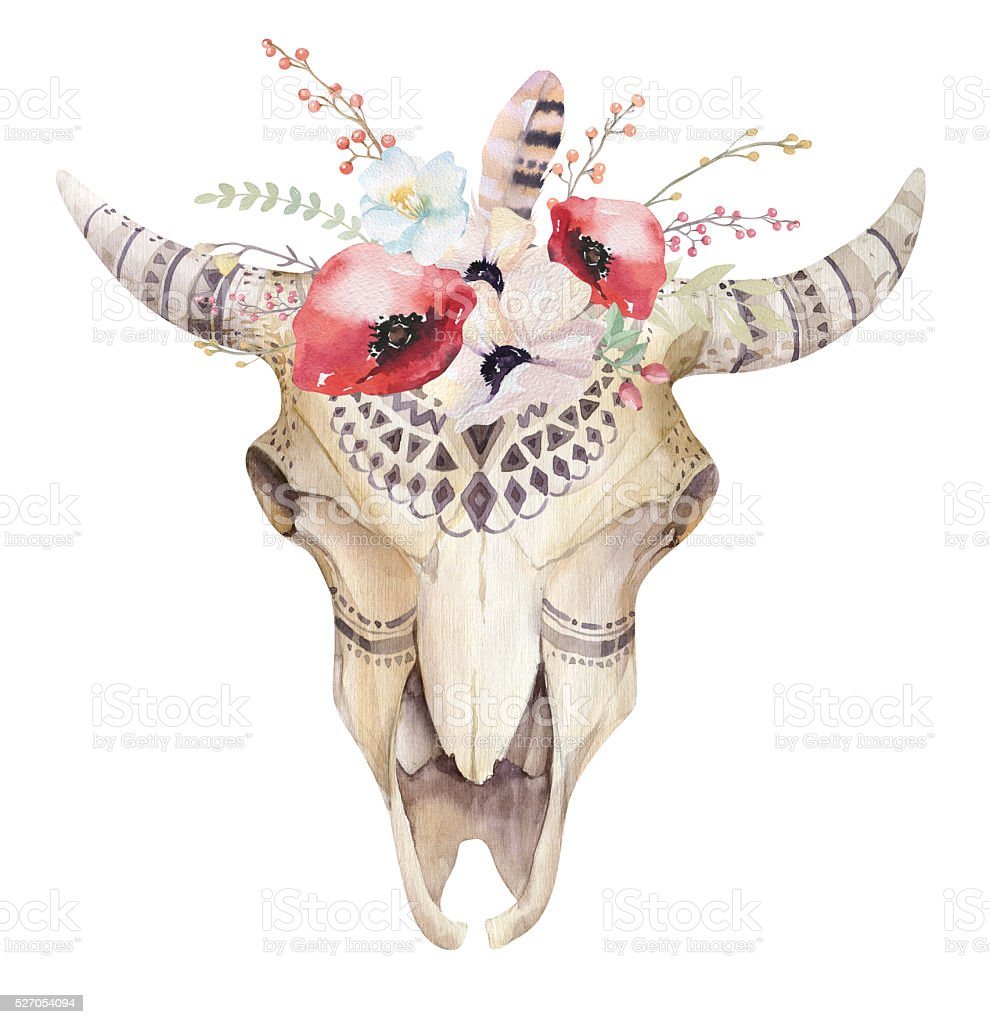 Watercolor bohemian cow skull.  Western mammals. Watercolour stock photo