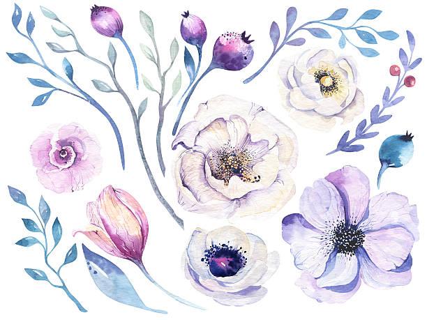 Watercolor boho flower set. Spring or summer decoration floral bohemian – Foto