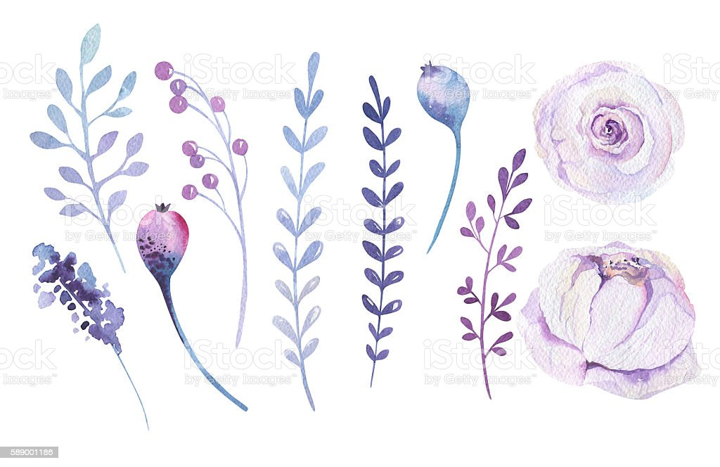 Watercolor boho flower set. Spring summer decoration floral bohemian design stock photo