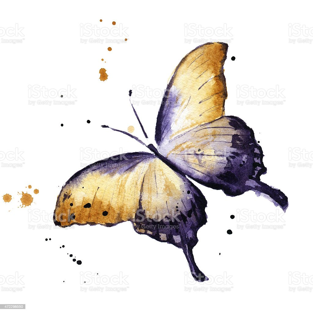 Aquarell Schmetterling  – Foto