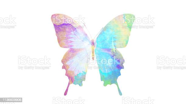 Watercolor butterfly tropical insect for design isolated on white picture id1136609906?b=1&k=6&m=1136609906&s=612x612&h=h1y mw4abesvdw3eghyvv5i toez3w5atk35fndftt8=