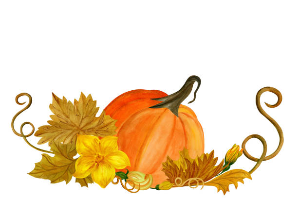 Watercolor composition with pumpkin, flowers and leaves stock photo