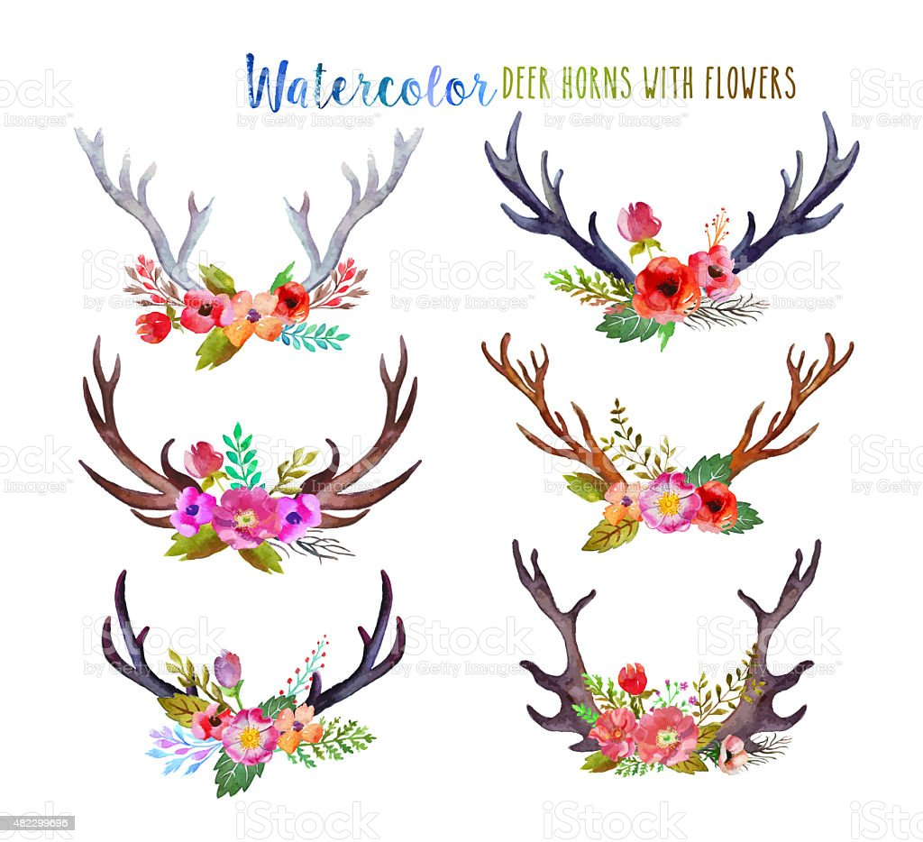 Watercolor deer horns stock photo