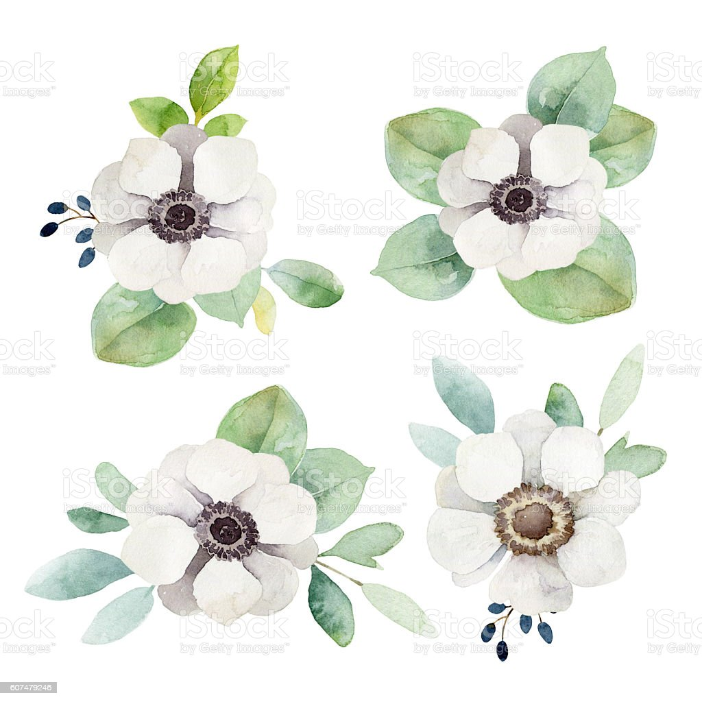 Watercolor floral boutonnieres with anemones and eucalyptus leaves stock photo