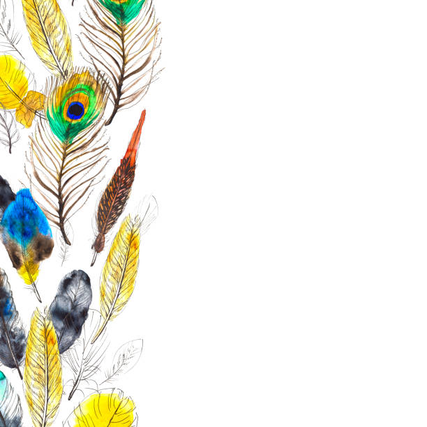 aquarellrahmen mit bunten federn auf weißem hintergrund - traumfänger malerei stock-fotos und bilder