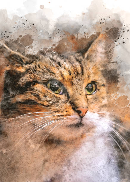 Watercolor ginger, domestic cat made by digital art painting – zdjęcie