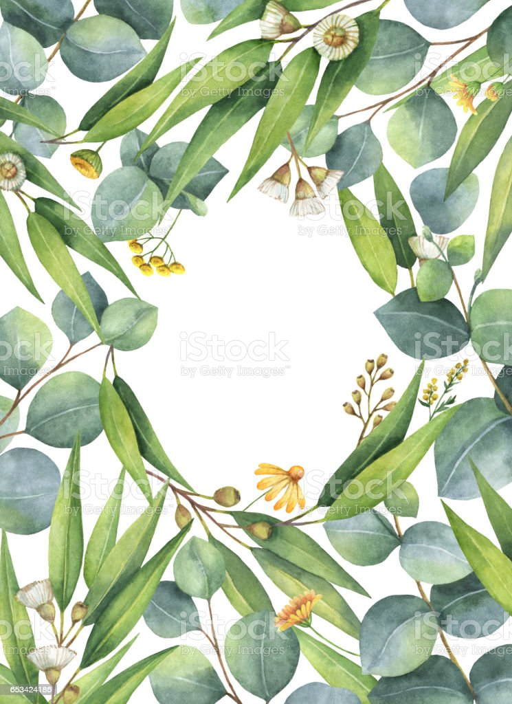 Watercolor green floral card with eucalyptus leaves and branches isolated on white background. stock photo