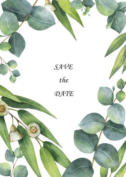 Aquarell grün floral-Karte mit Eukalyptus-Blätter und Zweige, die isoliert auf weißem Hintergrund. – Foto