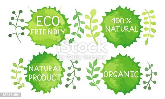 857345082 istock photo Watercolor green logos set. 857341884
